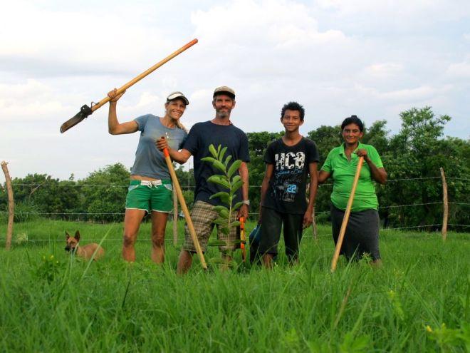 brisas tree planters